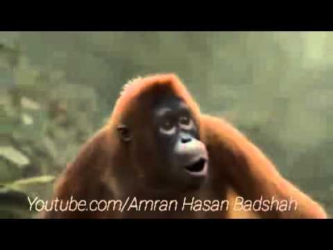 Dekhega Raja Trailer-Nakash Aziz,Neha Kakkar