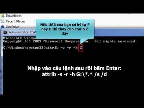 Cách lấy lại dữ liệu bị virus ẩn trên USB