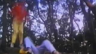 Godfrey Ho's Official Exterminator - Kill for Love (1988)