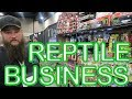 $500 TURNED INTO $500k REPTILE BUSINESS! Andy Hein of Southern Reptile Supplies
