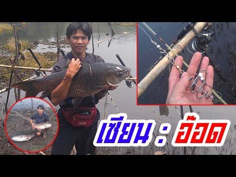 The Best Thai Fishing ตกปลายี่สกอ่างเก็บน้ำแม่ปืม ตัวใหญ่มาก!! พร้อมสูตรและวิธีผูกเบ็ดท้ายคลิป