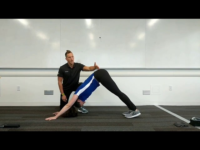 Movement Education Module 2: Handwalks