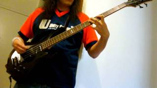 The Hives - Walk Idiot Walk Bass Cover