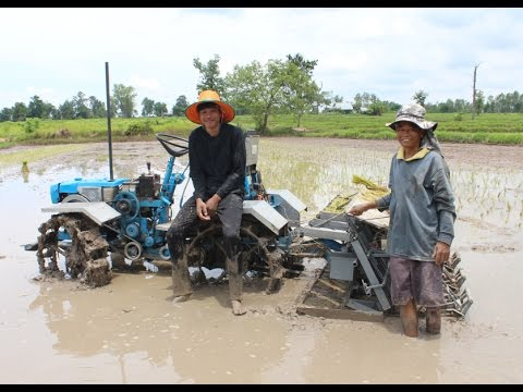 Riding Type Rice Transplanter with Washed-Root Seedling  - Testing EP1