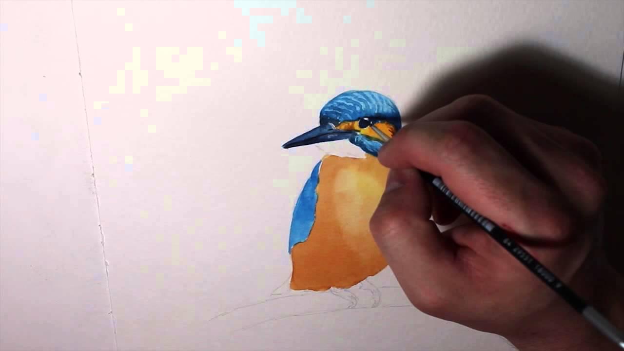 Kingfisher Speed Painting - Luis Serrano - YouTube