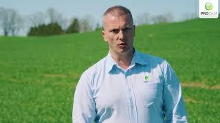 Na co zwrócić uwagę w ochronie pszenicy?
