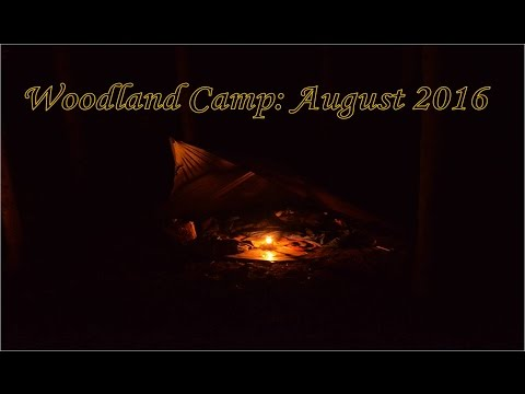 Woodland Camp: Fire Making, Camp Curry and a Tarp Shelter