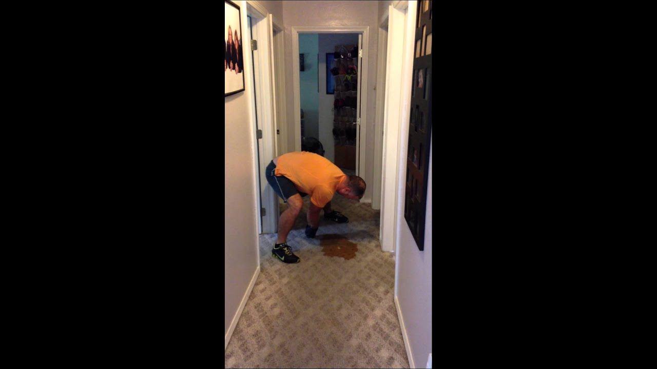 How To Remove Carpet Stains Dog Puke Dog Poop Youtube