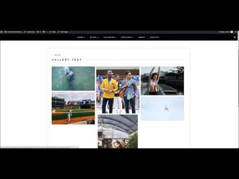 Gallery WordPress Theme - Using Envira Gallery