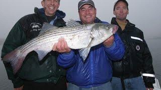 Striped Bass Fishing - Sandy Hook, NJ