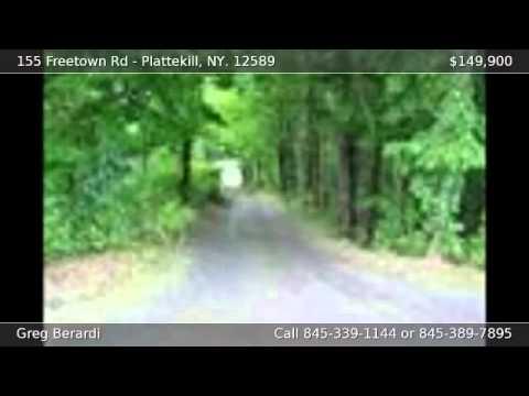 155 Freetown Rd Plattekill NY 12589
