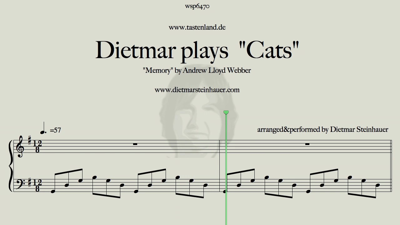 Dietmar plays cats memory by andrew lloyd webber youtube for Dietmar steinhauer