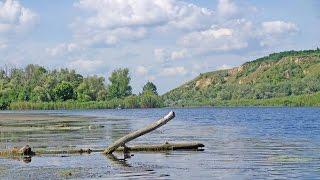 Рыбалка летом, река Ворскла, нижнее течение
