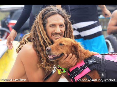 Surf Dog Ricochet surfs with Rob Machado