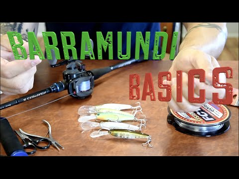Barramundi Fishing Basics Jerk Bait Series - Dean Silvester