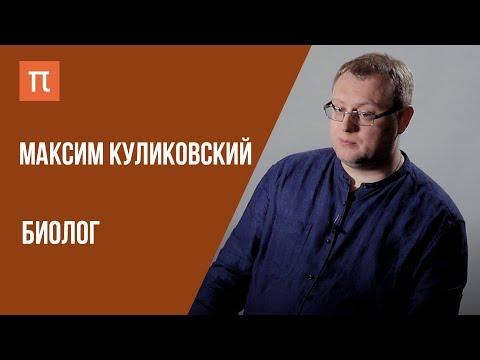 Что я знаю — МИКРОВОДОРОСЛИ // Биолог Максим Куликовский на ПостНауке