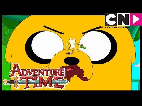 Время приключений | Джейк против Мемяу | Cartoon Network