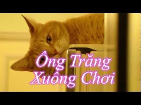 Ông trang xuong choi Pham Duy Karaoke