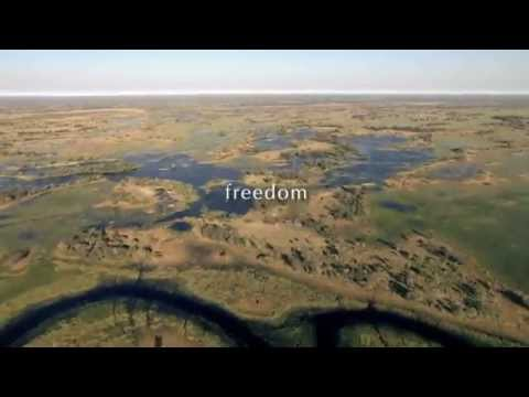 Royal African Safaris: Our Africa From Dawn Til Dusk