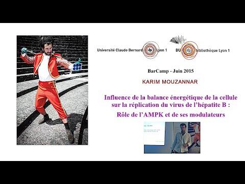 Barcamp : Karim Mouzannar