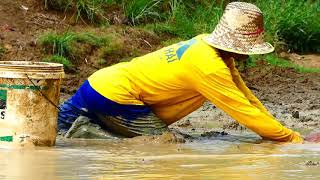 Amazing Fishing! Now A Fisherman Catch Fish A Lot In Mud In Dry Season After Spill Dry Water