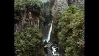 Documentary - Shamans Of The Amazon (2002) - Dmt, Ayahuasca, Mckenna