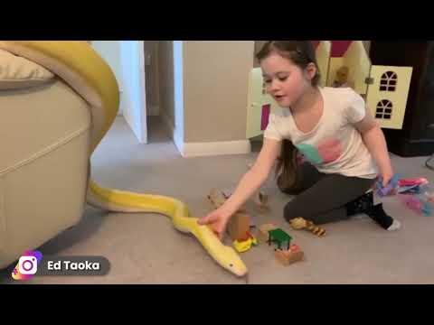Niña de 7 años tiene como mascotas a dos enormes serpientes