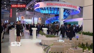РИФ -2019: Сочи представит инвестиционные проекты на 7 млрд рублей