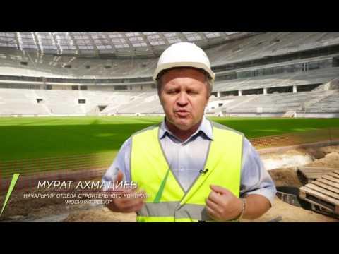 Лужники технология футбольного поля