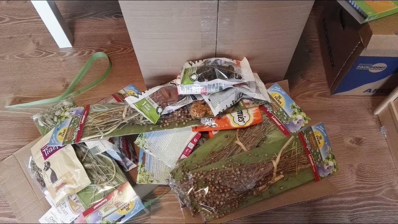 Weihnachtsgeschenke Für Katzen Und Hamster Diegurkenfresser
