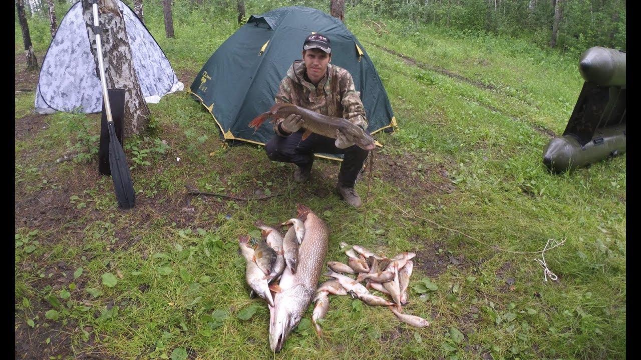 Щука, окунь, рыбалка в глухомани на протоках Чулыма