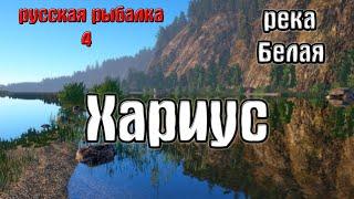 Русская рыбалка 4 рр4 rf4 река Белая Хариус