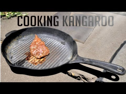 Cooking Kangaroo using only the Australian Sun!