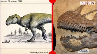 New 'Shark-Toothed' Dinosaur & Sauropods Had Beaks? - 7 Days of Science