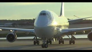 (HD) 30+ Mins of Orlando International Airport Terminal Plane Spotting