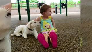Amputée des deux pieds, cette petite fille retrouve le sourire grâce à son chien