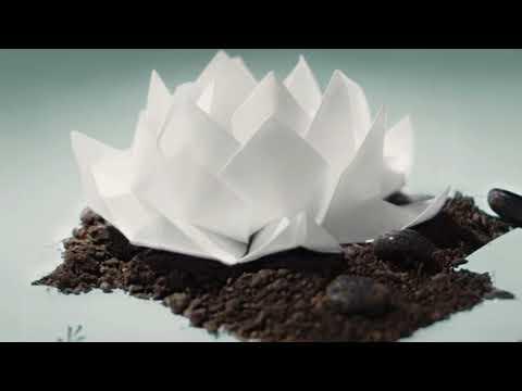 Oceans Ate Alaska- Hikari Instrumental (Full Album)