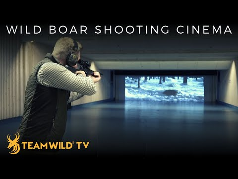 Driven Wild Boar Hunting Techniques At Müller Shooting Cinema