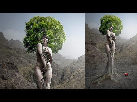 Photoshop CC Tutorial | the valid tree