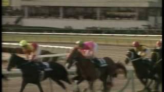 1999有馬記念【グラスワンダーVSスペシャルウィーク】.mpg