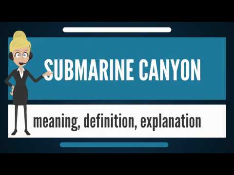 What is SUBMARINE CANYON? What does SUBMARINE CANYON mean? SUBMARINE CANYON meaning & explanation
