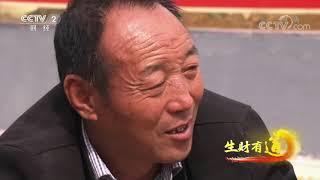 《生财有道》 20191101 咱们家乡有特产 河南渑池:物产丰富迎丰收| CCTV财经