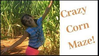 Crazy Corn Maze Pumpkin Patch Family Day
