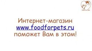 Интернет-магазин www.foodforpets.ru(5 причин купить товары для животных в интернет-магазине Food For Pets Сегодня товары для животных интернет предл..., 2016-02-05T11:08:47.000Z)