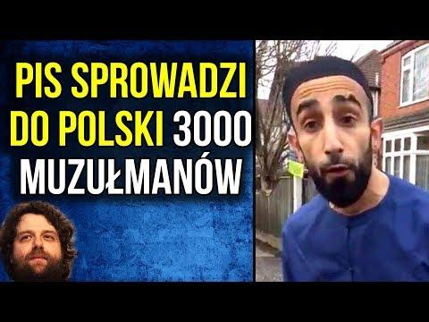 PIS Masowo Sprowadza Imigrantów Polski - Komentator