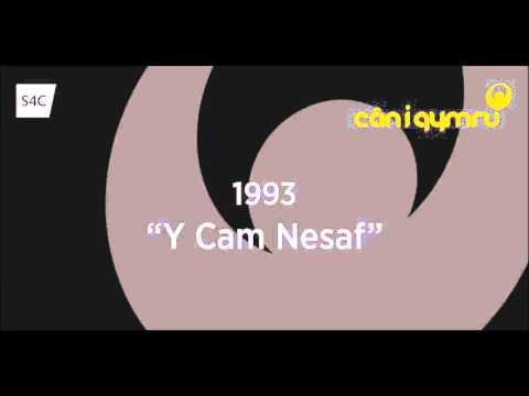 Can i Cymru 1993 - Y Cam Nesaf