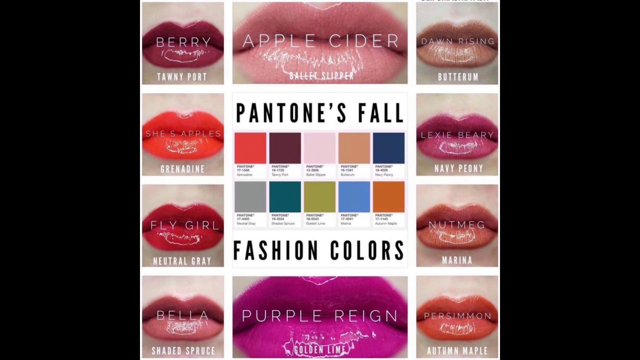 Top fall 2017 lipsense colors and looks bbk youtube top fall 2017 lipsense colors and looks bbk geenschuldenfo Gallery