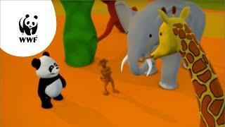 Kijk Pipapanda zoekt een huisje voor Bogie filmpje