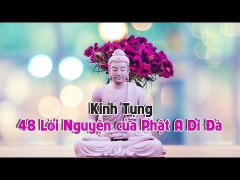 Thầy Pháp Hòa Tụng Kinh 48 Lời Nguyện Của Phật A Di Đà