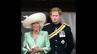 No royal wants to be king or queen, says Prince Harry